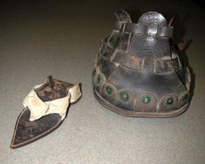 Two objects, a pointed sandal and a larger shoe-like object